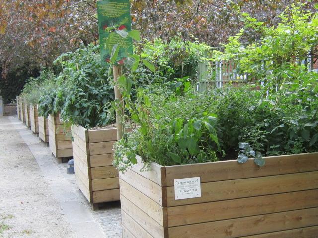 Potagers et composts à Saint-Gilles